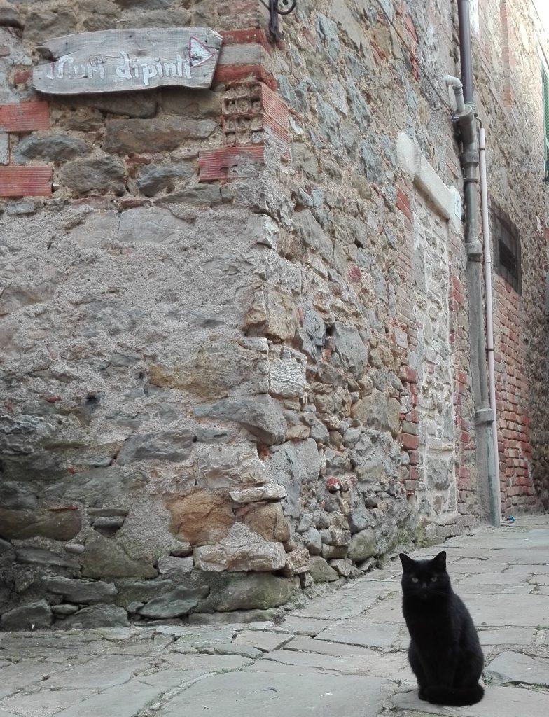 Muri-dipinti-gatto
