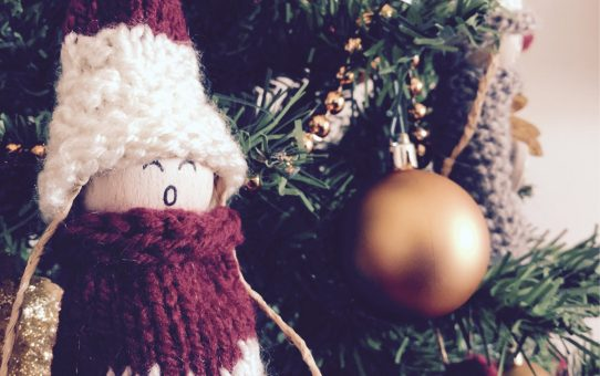 Sotto l'albero? L'Umbria!